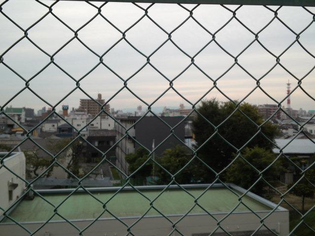 天下茶屋湿地と大阪市内を望む