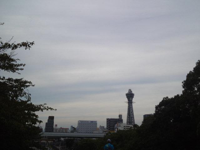 慶沢園・茶臼山周辺から通天閣を望む。