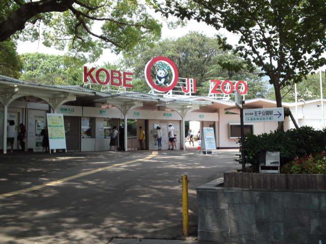 神戸でパンダに会える動物園・王子公園動物園へ行ってきました。