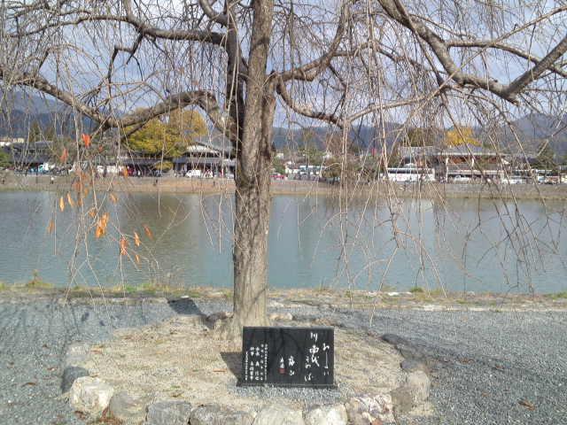 京都の桂川の上流の「おおい川」・大堰川(おおいがわ)