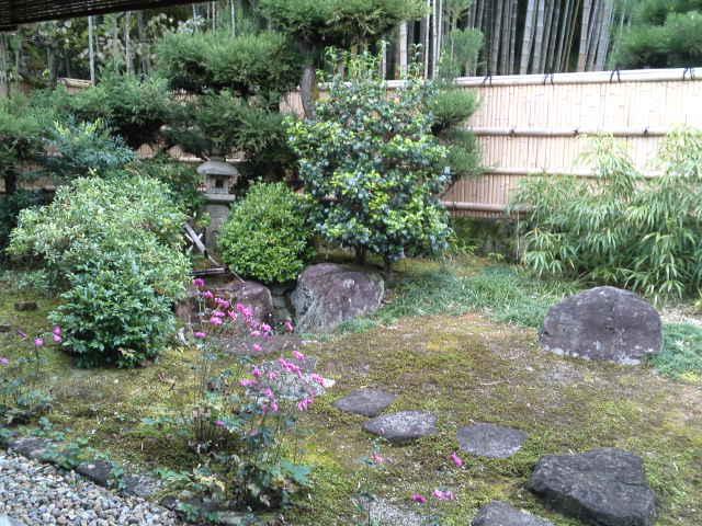 庭には大きい石