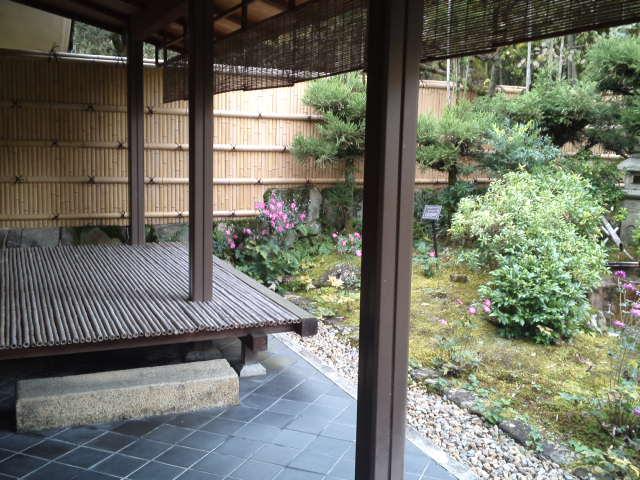 茶室から生態園を望む。