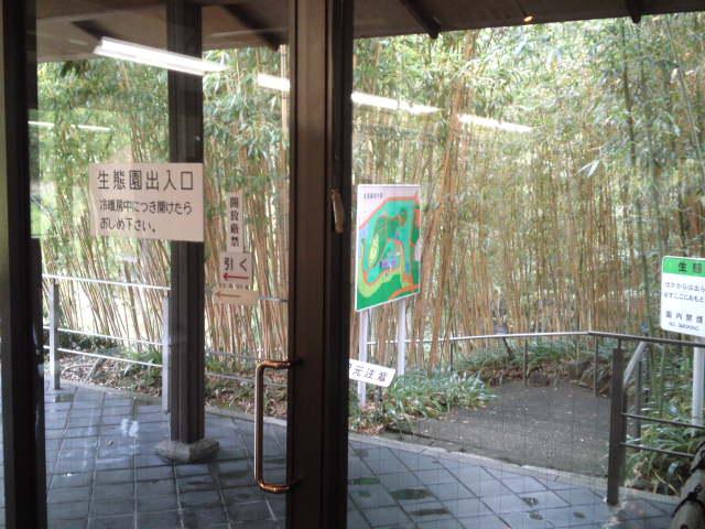 写真は生態園への出入り口です。