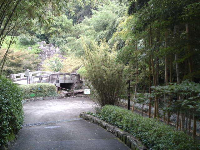 洛西竹林公園内の風景