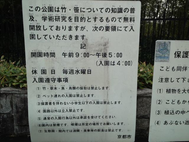 竹林公園内はかなり広そう