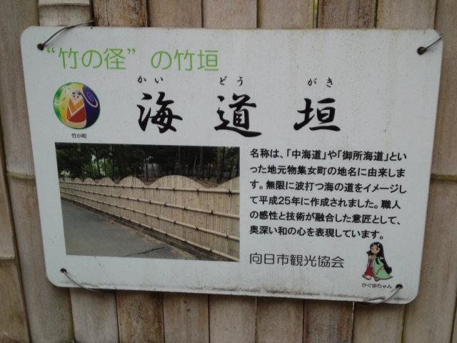 写真は海道垣です。