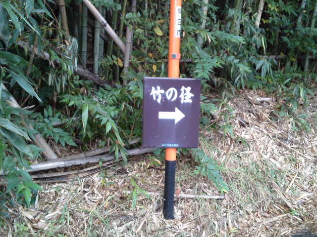 竹の径付近