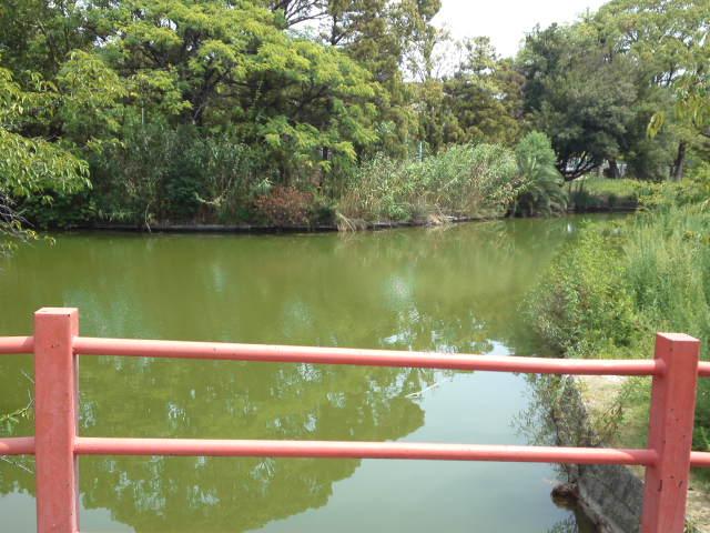 写真は桃ヶ池公園の北側から入り橋をわたるところ