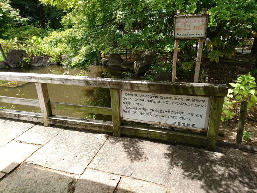 写真は元浜緑地の西側にある池です。