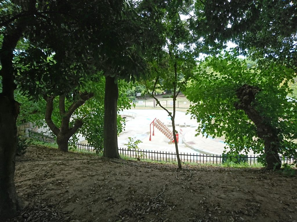 写真は元浜緑地のわんぱく池。