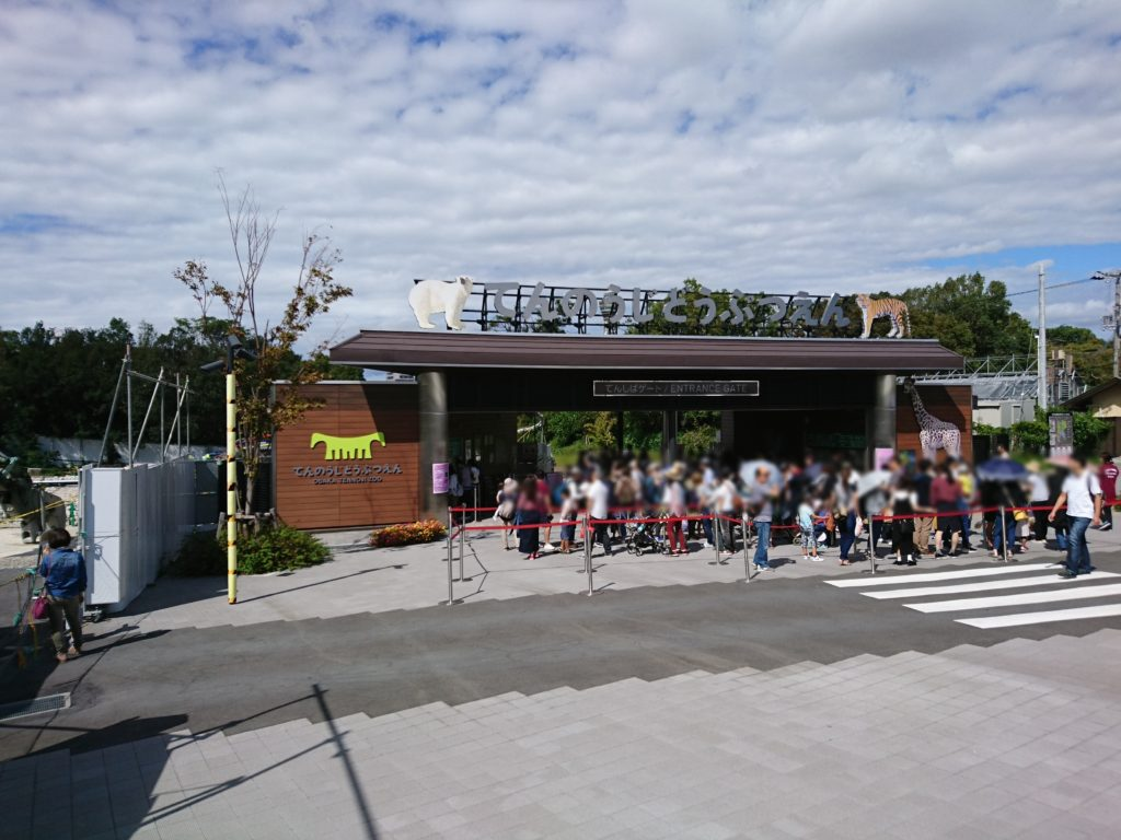 天王寺動物園に遊びに行ってきたゾウ!夏のナイトZOOは令和2年8月9日・10日・14日・15日に開催。