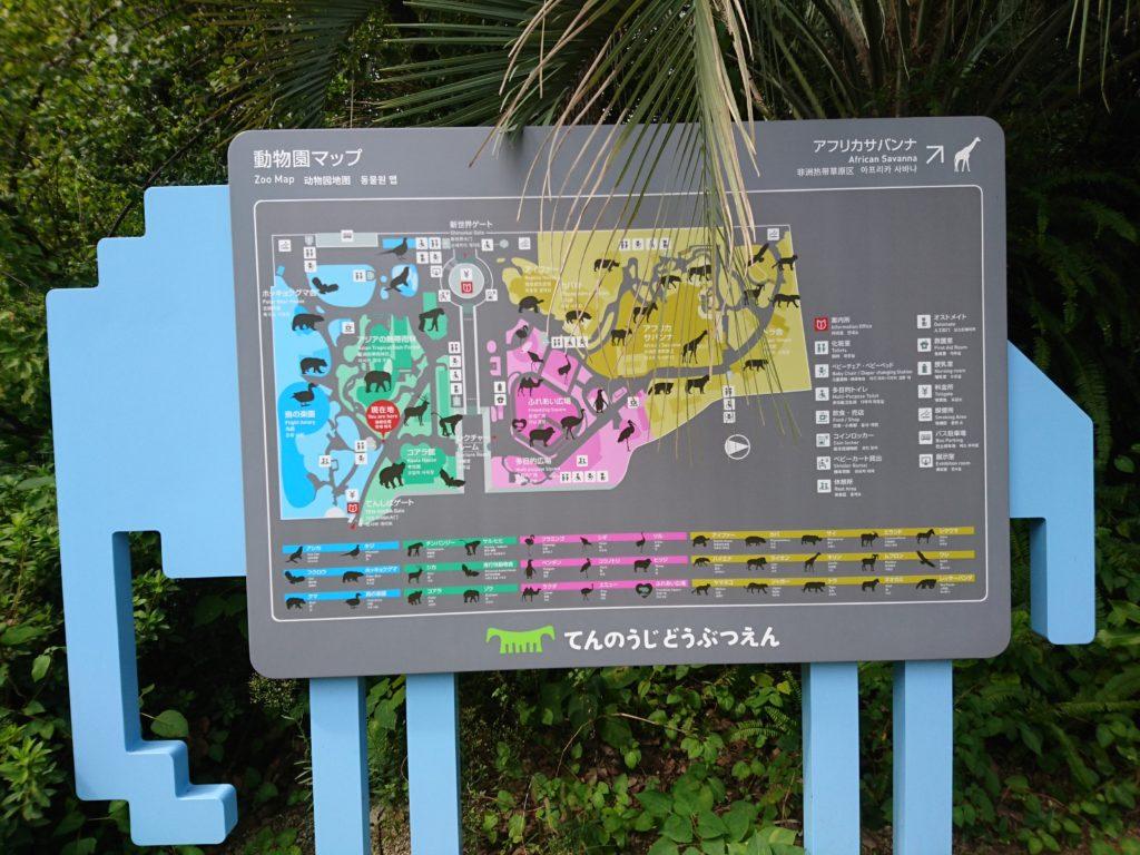 天王寺動物園にはふれあい広場があります!