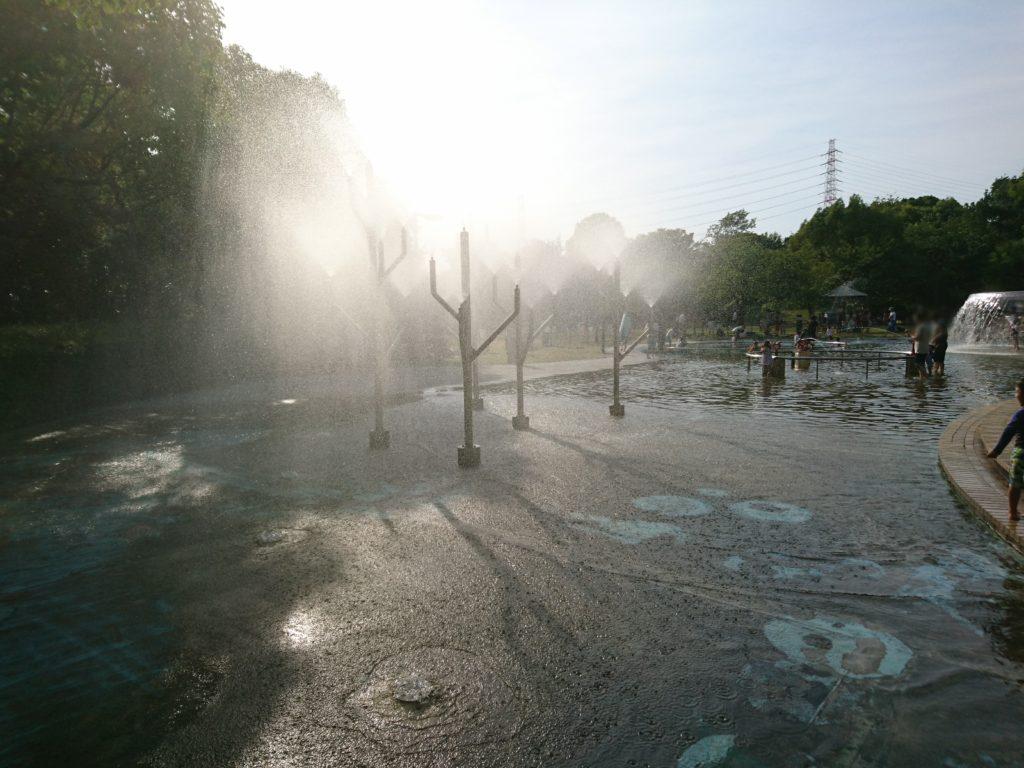 元浜緑地のわんぱく池は午後5時で閉園